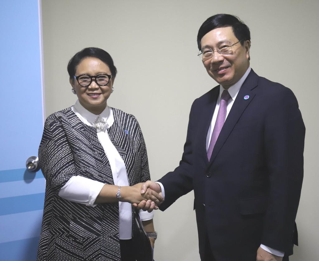 Phó Thủ tướng Phạm Bình Minh tiếp xúc song phương bên lề AMM-51 - ảnh 1