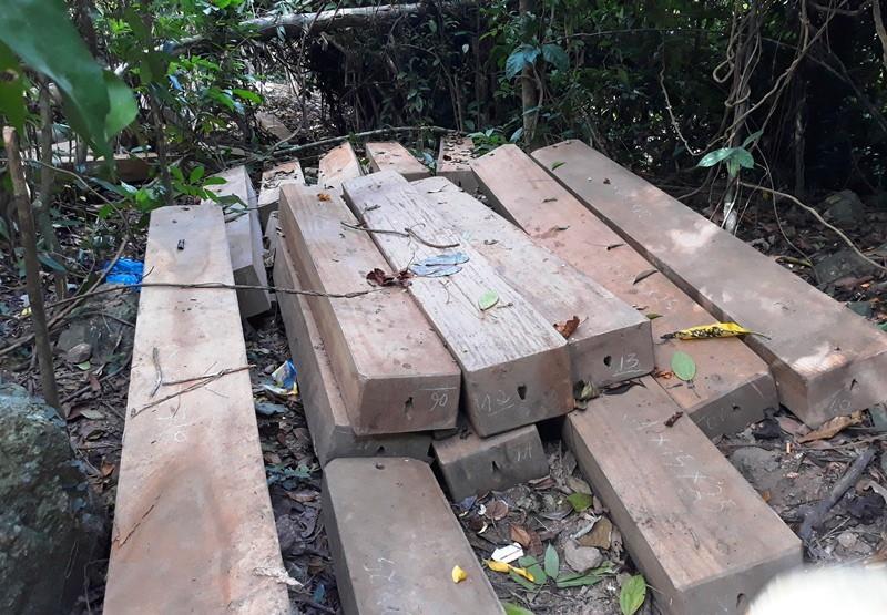Gỗ được xẻ thành hộp dài khoảng hơn 2m, dày từ 15-20cm, rộng 40-50cm được tập kết chuẩn bị tuồn ra khỏi rừng thì bị người dân phát hiện báo cho cơ quan chức năng.