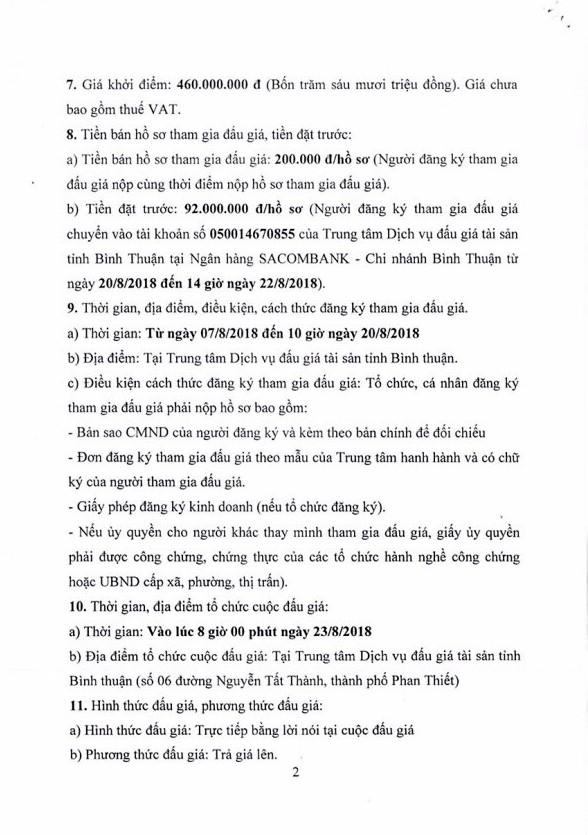 Ngày 23/8 đấu giá gỗ rừng trồng bạch đàn tại Bình Thuận - ảnh 2