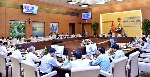 Bộ trưởng, Chủ nhiệm Ủy ban Dân tộc trả lời chất vấn - ảnh 4