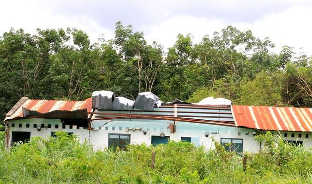 Bình Dương: Cận cảnh khu đất, biệt thự 80 tỷ đồng của cựu Bí thư thị xã Bến Cát vừa bị bắt - ảnh 6