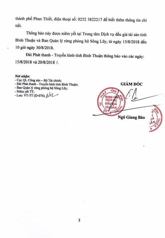 Ngày 31/8/2018, đấu giá gỗ rừng tự nhiên ngã đổ tại Bình Thuận - ảnh 3
