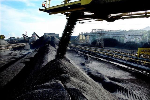 Sau thời gian chủ yếu xuất than và dầu thô, hiện Việt Nam ồ ạt nhập sản phẩm này với giá đắt hơn.