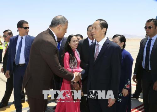 Lần đầu tiên Chủ tịch nước Việt Nam thăm chính thức Ai Cập - ảnh 1