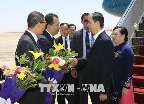 Lần đầu tiên Chủ tịch nước Việt Nam thăm chính thức Ai Cập - ảnh 2