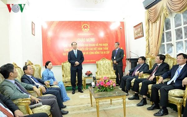 Chủ tịch nước nói chuyện với cán bộ, nhân viên Đại sứ quán Việt Nam tại Ai Cập