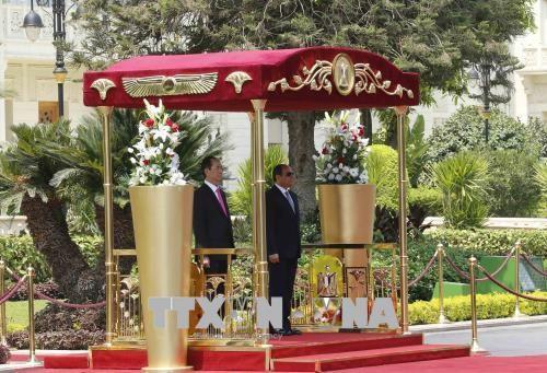 Chủ tịch nước Trần Đại Quang và Tổng thống Ai Cập Abdel Fattah Al Sisi tại lễ đón