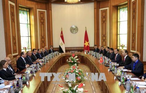 Chủ tịch nước hội đàm với Tổng thống Ai Cập - ảnh 1