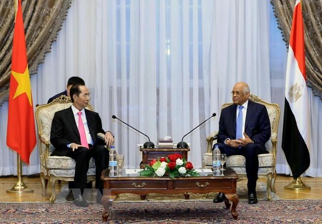 Chủ tịch nước Trần Đại Quang hội kiến Chủ tịch Quốc hội Ai Cập Ali Abdel Aal. Ảnh: TTXVN