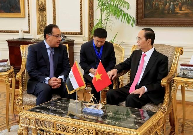 Việt Nam luôn coi trọng quan hệ hữu nghị truyền thống với Ai Cập - ảnh 1