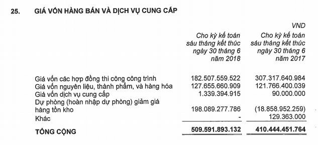 Gỗ Trường Thành tăng lỗ thêm 164 tỷ sau soát xét, bị nghi ngờ khả năng hoạt động liên tục - ảnh 2