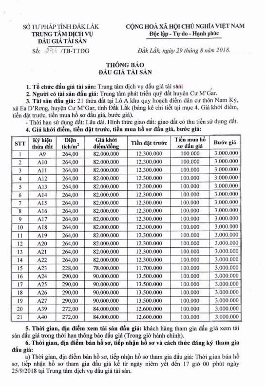 Ngày 28/9/2018, đấu giá quyền sử dụng 21 thửa đất tại huyện Cư M'Gar, Đắk Lắk - ảnh 1
