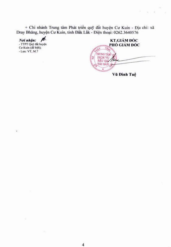 Ngày 4/10/2018, đấu giá quyền sử dụng đất tại huyện Cư Kuin, Đắk Lắk - ảnh 4