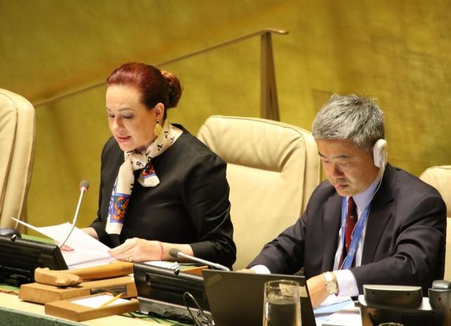 Đại hội đồng Liên hợp quốc dành một phút mặc niệm Chủ tịch nước Trần Đại Quang - ảnh 1