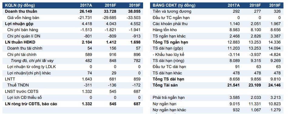 VCSC: Lãi ròng Hoa Sen ước tính giảm 59% trong 2018, khó phục hồi lợi nhuận - ảnh 1