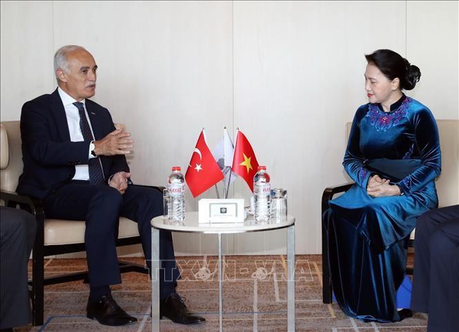 Chủ tịch Quốc hội Nguyễn Thị Kim Ngân tiếp ông Nail Olpak, Chủ tịch Hội đồng Kinh tế đối ngoại Thổ Nhĩ Kỳ (DEIK). Ảnh: TTXVN