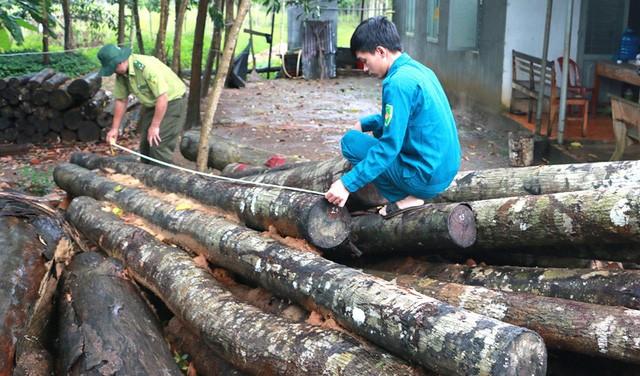 Tỉnh uỷ Bình Phước yêu cầu điều tra vụ phá rừng nghiêm trọng - ảnh 3