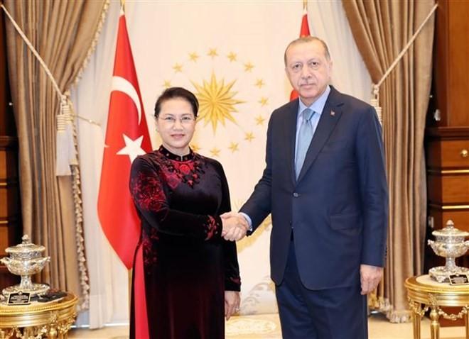 Chủ tịch Quốc hội Nguyễn Thị Kim Ngân hội kiến Tổng thống Thổ Nhĩ Kỳ Recep Tayyip Erdogan. Ảnh: TTXVN