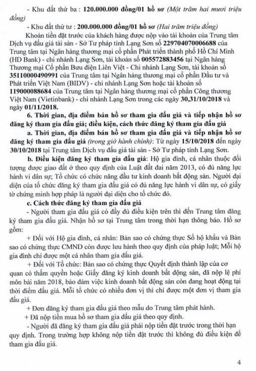 Ngày 2/11/2018, đấu giá quyền sử dụng đất tại huyện Lộc Bình, tỉnh Lạng Sơn - ảnh 4