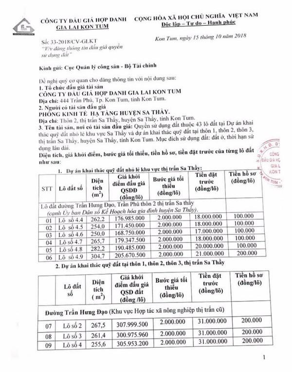 Ngày 09/11/2018, đấu giá quyền sử dụng đất tại huyện Sa Thầy, tỉnh Kon Tum - ảnh 1