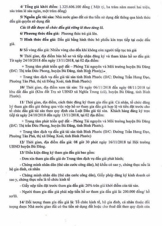 Ngày 16/11/2018, đấu giá quyền sử dụng 3 lô đất tại huyện Bù Đăng, tỉnh Bình Phước - ảnh 2