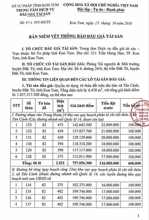 Ngày 22/11/2018, đấu giá quyền sử dụng 16 thửa đất tại huyện Đắk Tô, Kon Tum - ảnh 1