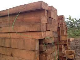 Ngày 15/11/2018, đấu giá 27,053 m3 gỗ xẻ hộp các loại tại Khánh Hòa