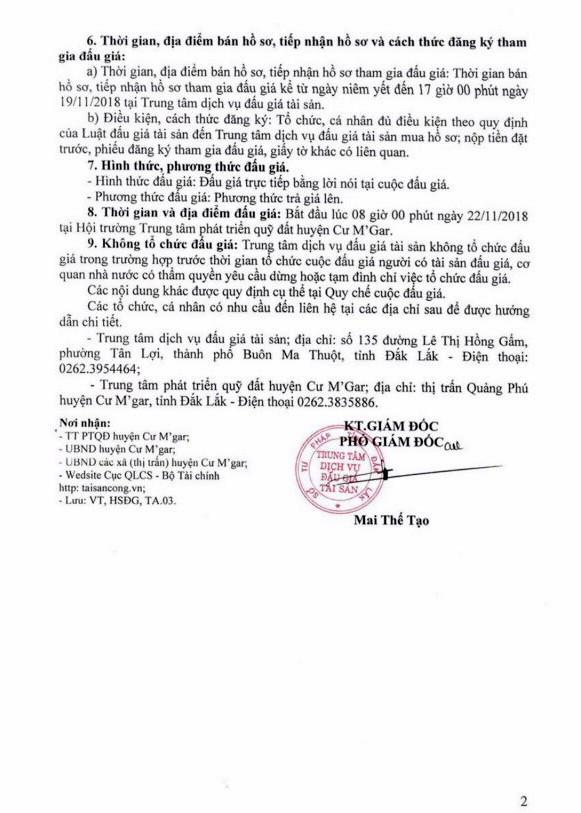 Ngày 22/11/2018, đấu giá quyền sử dụng đất tại huyện Cư M'Gar, Đắk Lắk - ảnh 2