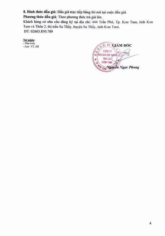 Ngày 14/12/2018, đấu giá quyền sử dụng 40 lô đất tại huyện Sa Thầy, tỉnh Kon Tum   - ảnh 4