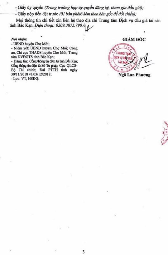 Ngày 14/12/2018, đấu giá gỗ nghiến tròn, xẻ tại tỉnh Bắc Kạn - ảnh 3