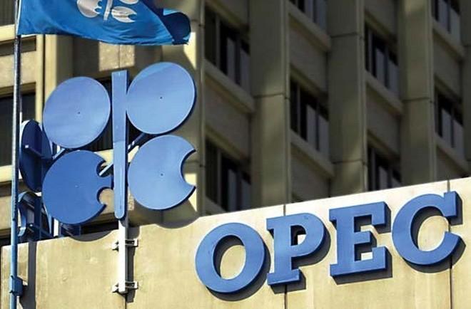 """""""OPEC đã không dự liệu được kịch bản giá dầu giảm quá mạnh"""""""