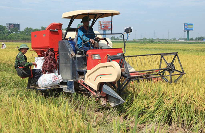 Lần đầu tiên sau nhiều năm, tăng trưởng khu vực nông nghiệp bị suy giảm
