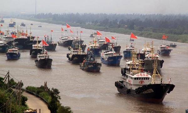 Các tàu cá của Trung Quốc. Ảnh: Xinhua.