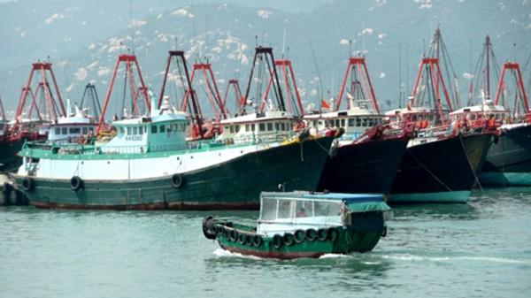 Đội tàu cá cỡ lớn của ngư dân Trung Quốc ở đảo Hải Nam. Ảnh: SCMP