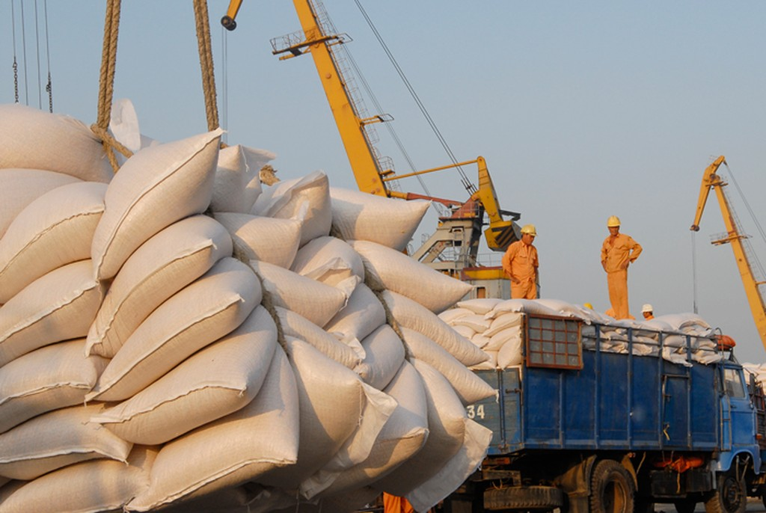Sản xuất và kinh doanh gạo là một trong những lĩnh vực chính của Docimexco. Ảnh: Lê Tiên