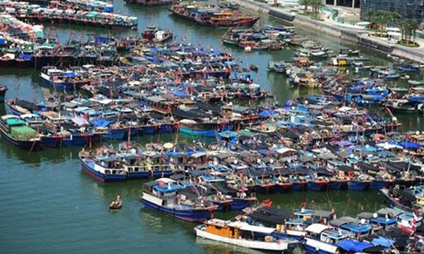 Các tàu cá Trung Quốc ở đảo Hải Nam. Ảnh:Xinhua