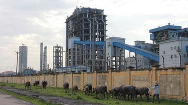"""Nhà máy Đạm Ninh Bình liên tiếp lỗ và hiện đang trong tình trạng """"sống dở chết dở""""."""