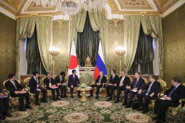 Lãnh đạo Nga - Nhật tìm kiếm cơ hội hợp tác tại đảo tranh chấp - ảnh 3