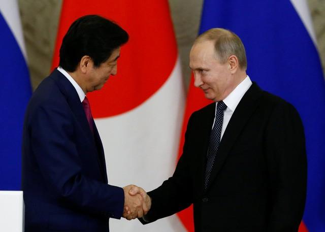 Lãnh đạo Nga - Nhật tìm kiếm cơ hội hợp tác tại đảo tranh chấp - ảnh 7