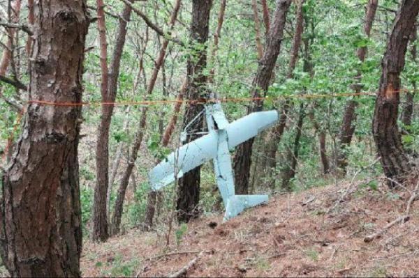 Máy bay không người lái nghi là của Triều Tiên rơi ở biên giới Hàn Quốc hôm 9/6. (Ảnh: Yonhap)