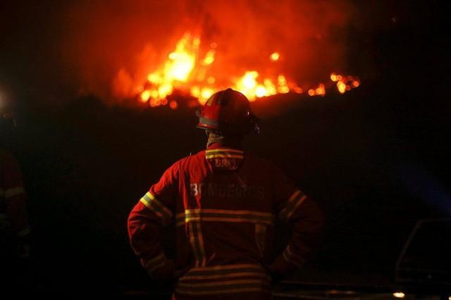 Một lính cứu hỏa tham gia dập tắt vụ cháy rừng khủng khiếp ở Bồ Đào Nha (Ảnh: Reuters)