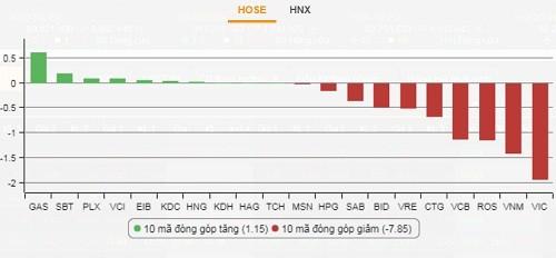 Bán tháo trên thị trường, VN-Index giảm gần 17 điểm - ảnh 2