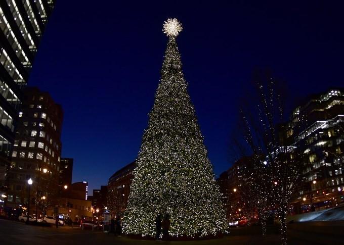 Thế giới tưng bừng đón Giáng sinh - ảnh 4