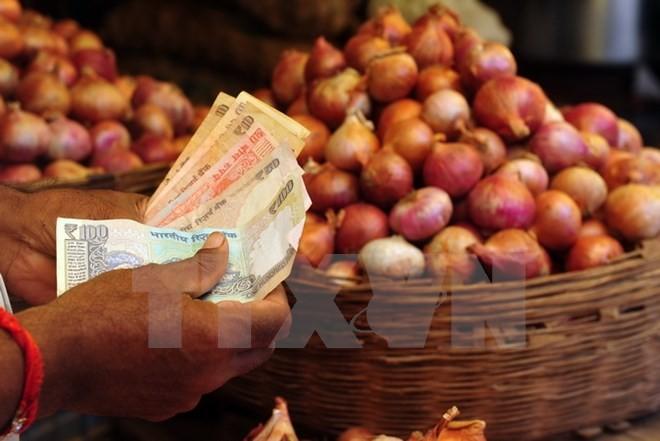 Người dân mua bán tại khu chợ ở Mumbai. (Nguồn: AFP/TTXVN)