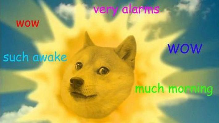 Trào lưu Doge phổ biến vào năm 2013 được lấy cảm hứng để tạo ra tiền ảo Dogecoin - Ảnh: DailyEdge.ie.