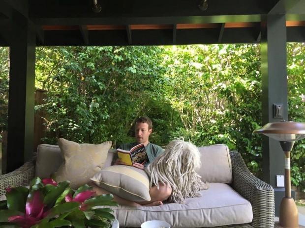Bên trong căn nhà khiêm tốn của ông chủ Facebook ở thung lũng Silicon - ảnh 11