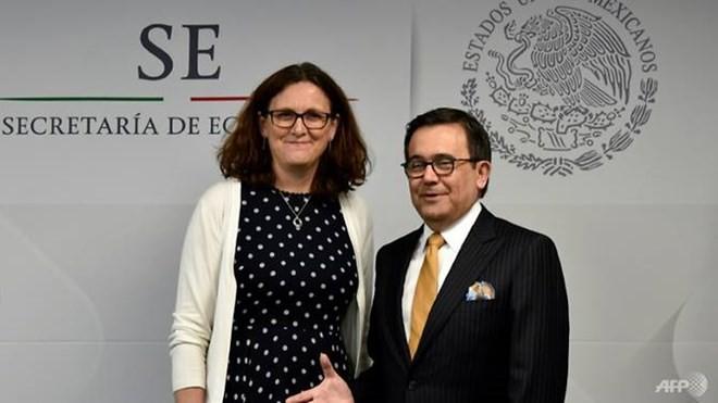Ủy viên EU phụ trách thương mại Cecilia Malmstrom và Bộ trưởng Kinh tế Mexico Ildefonso Guajardo. (Nguồn: AFP)