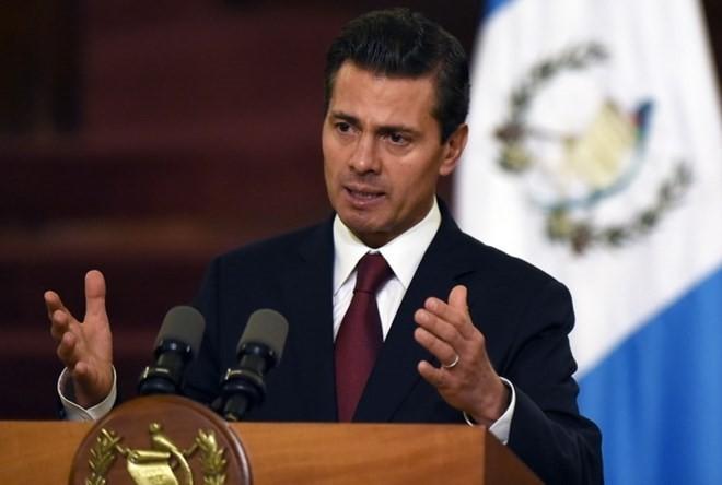 Tổng thống Mexico Enrique Peña Nieto. (Nguồn: AFP/TTXVN)