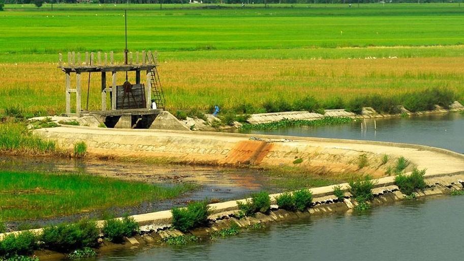 """Phản hồi về việc """"ém"""" HSMT tại Bình Thuận: Bên mời thầu xin rút kinh nghiệm"""