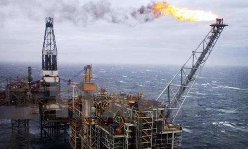 Giá dầu thế giới nối dài đà giảm. Ảnh: Reuters